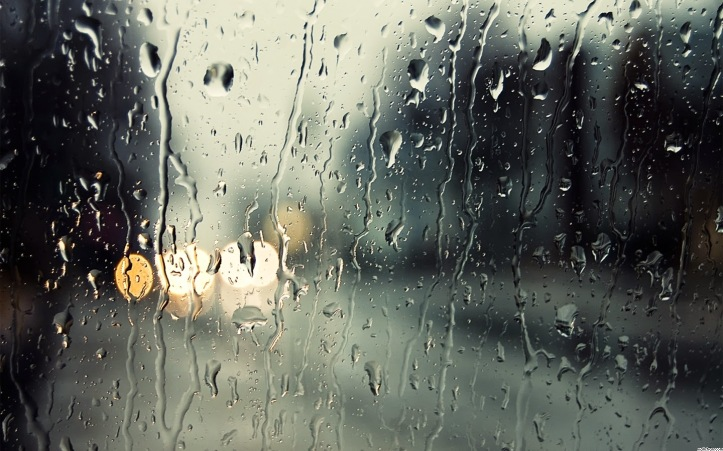 45442-rainy-window-4453